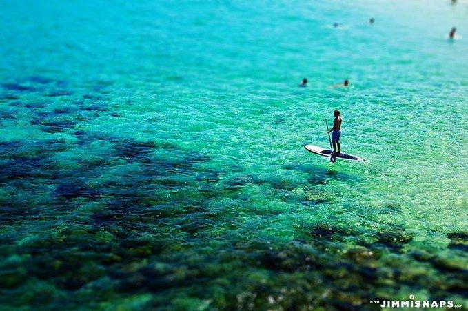 悉尼蔚蓝海滩一日游