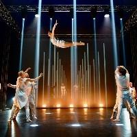 国际新马戏团和戏剧节
