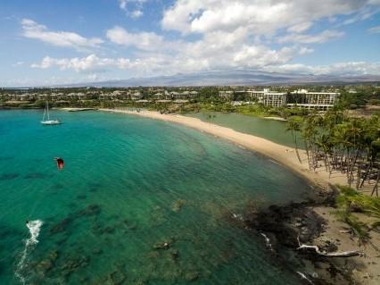 Aloha Poke Contest