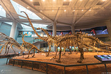重庆自然博物馆(新馆)