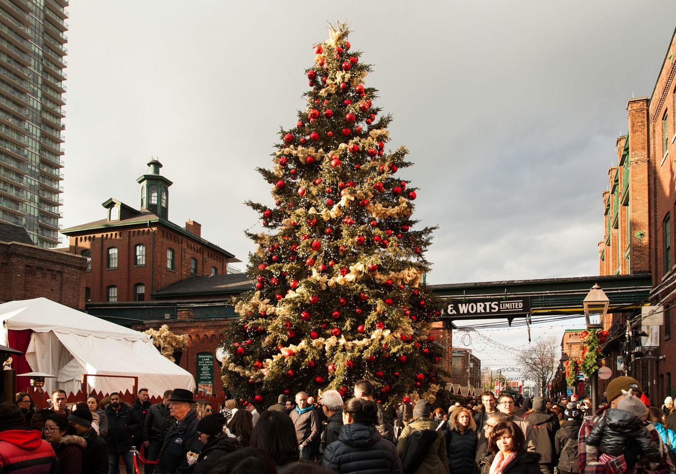 多伦多圣诞市场(TORONTO CHRISTMAS MARKET)