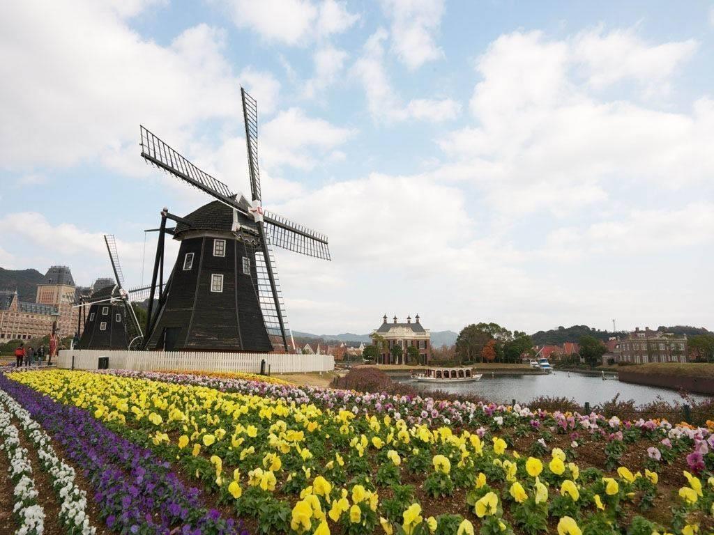 荷兰全境经典7日游