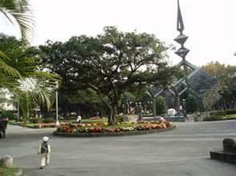 二二八和平公园的图片