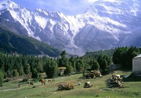 克孜勒苏柯尔克孜旅游图片