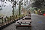 八仙山森林游乐区
