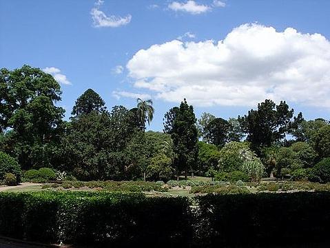 城市植物园
