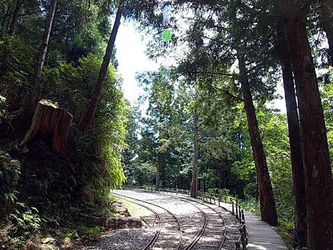 太平山国家森林游乐区