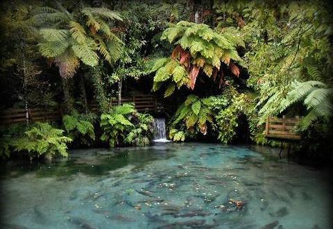 天堂谷野生动物园
