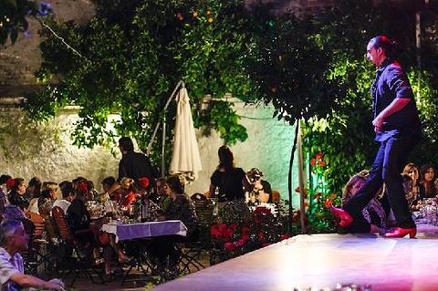 弗拉门戈Zoraya花园