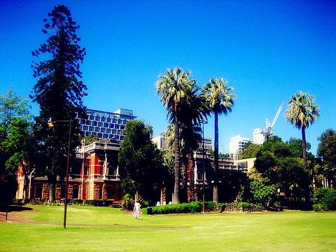 最高法院花园
