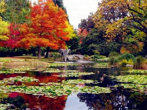 皇后镇花园旅游景点图片