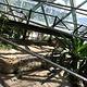 凯恩斯室内穹顶野生动物园