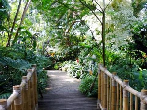 布勒德尔花鸟温室园旅游景点图片