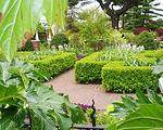 温哥华植物园