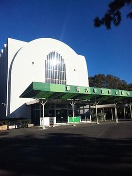 东海大学自然史博物馆