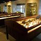 Museum of Classical Antiquities