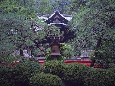 冈崎神社的图片