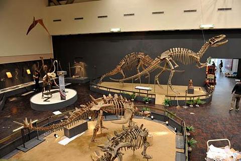 青龙山恐龙蛋化石群国家地质公园