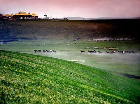 金帐汗蒙古部落旅游图片