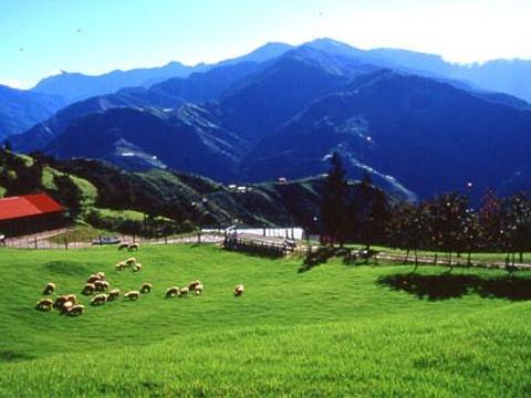 清境农场旅游景点图片