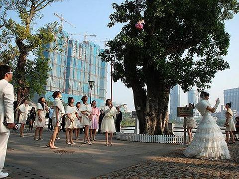 龙环葡韵住宅式博物馆旅游景点图片