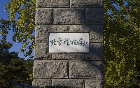 北京植物园旅游景点图片
