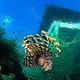 厦门海底世界