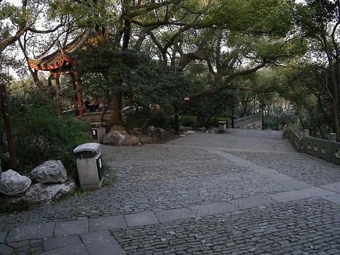 吴山广场旅游景点图片