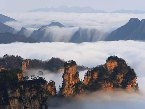 杨家界旅游景点图片