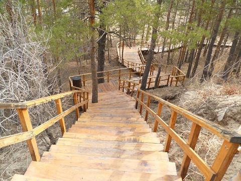 西山森林公园旅游景点图片
