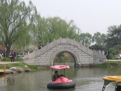 南京情侣园旅游景点图片