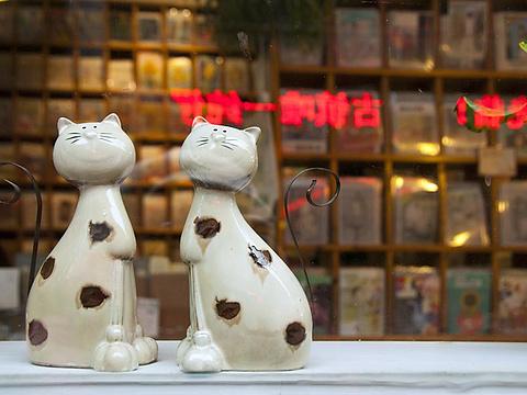 猫的天空之城概念书店(平江路店)旅游景点图片