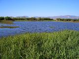 白沙河休闲公园