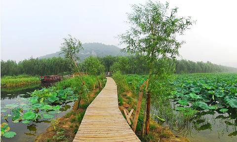 三山岛旅游图片