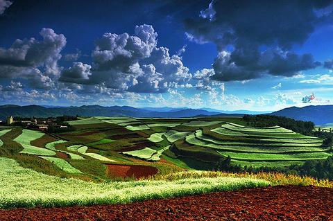东川红土地的图片