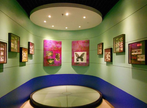 上海儿童博物馆