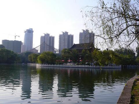 兴庆宫公园旅游景点图片