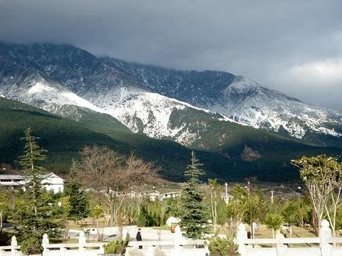 苍山雪参旅游景点图片