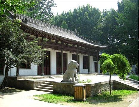 兴庆宫公园的图片