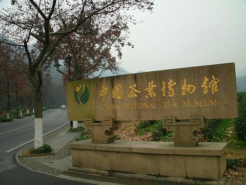 中国茶叶博物馆的图片