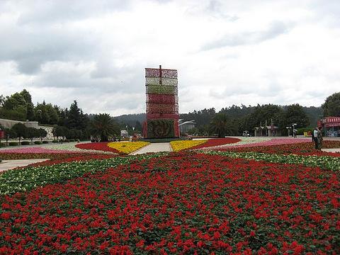 昆明世博园景区旅游景点图片