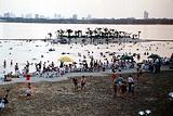 东湖疑海沙滩浴场