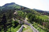 威虎山森林公园