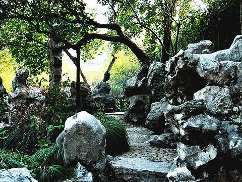 怡园旅游景点图片