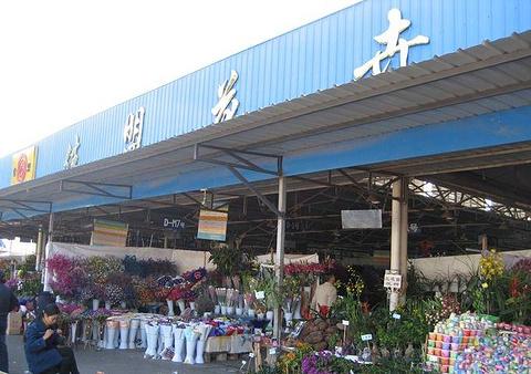 佳盟花卉市场