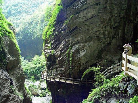 龙水峡地缝的图片