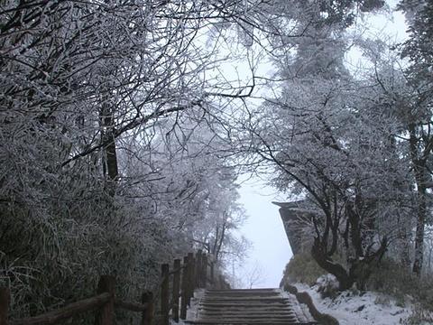 峨眉山旅游景点图片