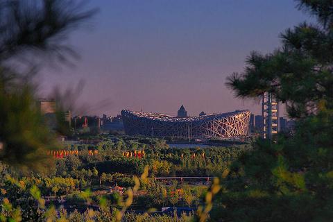 奥林匹克森林公园旅游景点图片