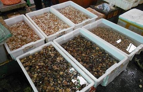 水产品大市场码头
