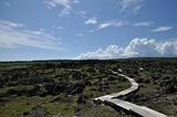 龙坑生态保护区